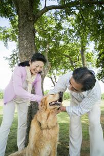犬をなでるシニア夫婦の素材 [FYI01143475]