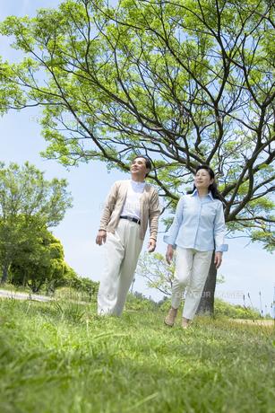 公園で散歩をするシニア夫婦の素材 [FYI01143482]