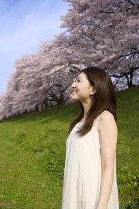 笑顔の女性と桜並木の素材 [FYI01143563]