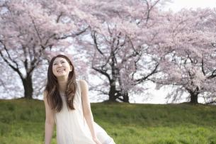 笑顔の女性と桜並木の素材 [FYI01143568]