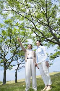 公園のシニア夫婦の素材 [FYI01143728]