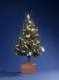 クリスマスツリーの素材 [FYI01144018]