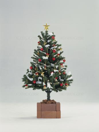 クリスマスツリーの素材 [FYI01144022]