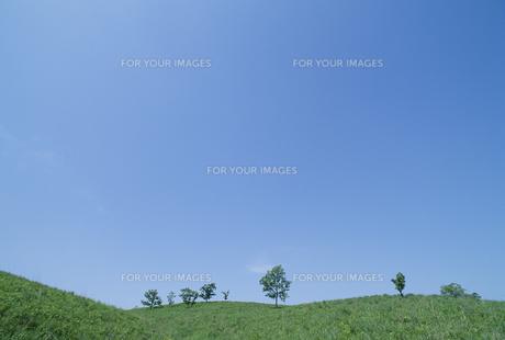 高原と青空の素材 [FYI01144121]