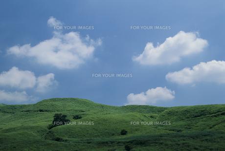 高原と青空の素材 [FYI01144124]