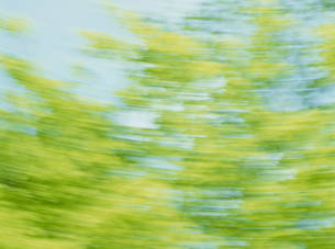 流れる新緑の素材 [FYI01144188]