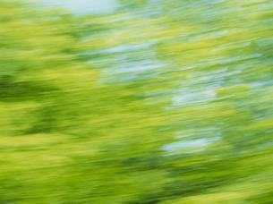 流れる新緑の素材 [FYI01144190]