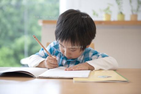 勉強をする男の子の素材 [FYI01144403]