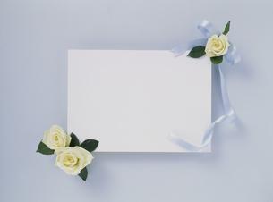 花カードの素材 [FYI01144408]