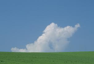 高原にわき上がる雲の素材 [FYI01144410]