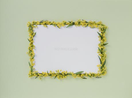 花カードの素材 [FYI01144418]