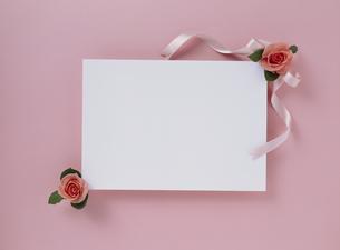 花カードの素材 [FYI01144459]