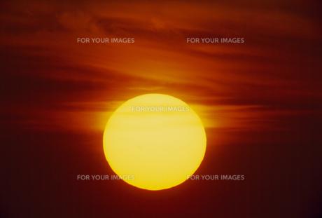夕日の素材 [FYI01144712]