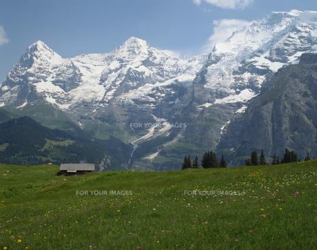 草原と山の素材 [FYI01145078]