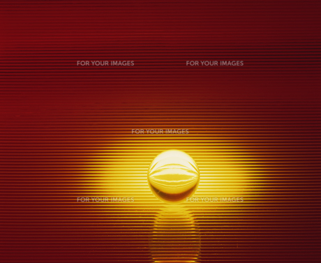 黄色い球体の素材 [FYI01145212]