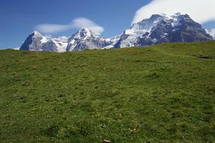 草原と山の素材 [FYI01145238]