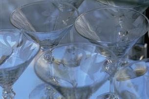 グラスの素材 [FYI01145289]
