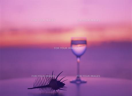 テーブルのグラスと骨貝と夕景の素材 [FYI01145327]
