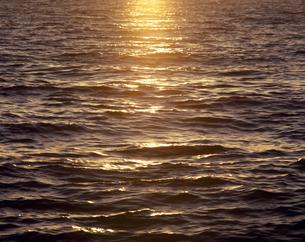 夕日に光る海面の素材 [FYI01145574]