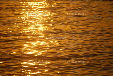 夕日に光る海面の素材 [FYI01145602]