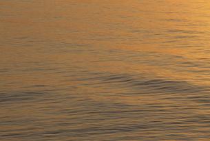夕景の海面の素材 [FYI01145650]