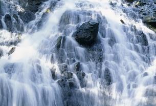 渓流の流れの素材 [FYI01145732]