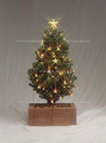 クリスマス・ツリーの素材 [FYI01145812]