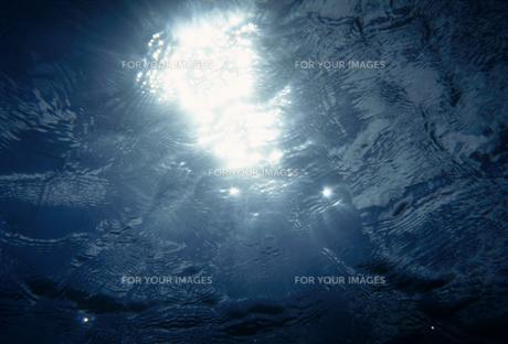 暗い水中から見た光の素材 [FYI01145957]