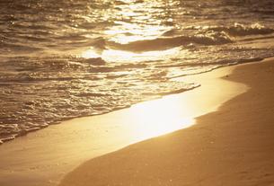 夕陽に光る波打ち際の素材 [FYI01146040]