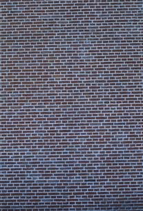 レンガの壁の素材 [FYI01146112]