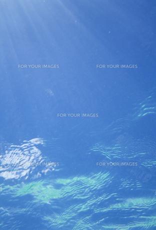 海中に差し込む光の素材 [FYI01146121]