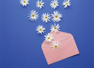 封筒と花の素材 [FYI01146163]