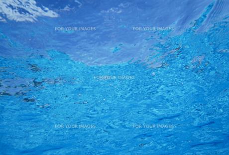 水中から見た水面の素材 [FYI01146202]