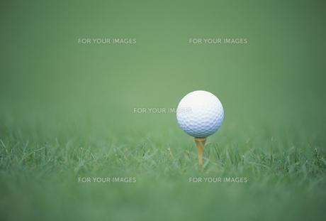 ゴルフボールの素材 [FYI01146429]