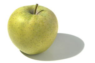 王林(オウリン) リンゴの素材 [FYI01148343]