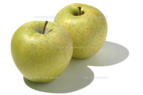 王林(オウリン) リンゴの素材 [FYI01148400]