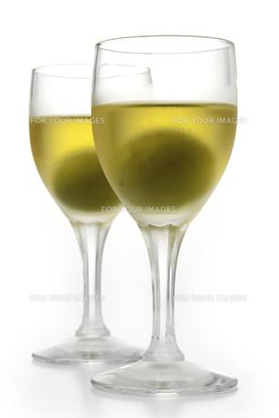 梅酒の素材 [FYI01148502]