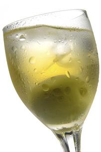 梅酒の素材 [FYI01148540]