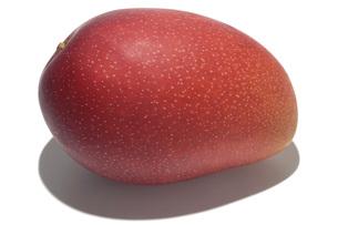アップルマンゴーの素材 [FYI01149146]