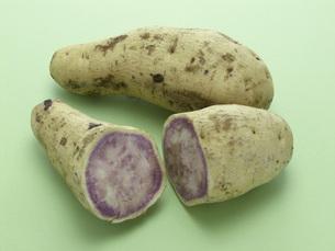 紫芋の素材 [FYI01150143]