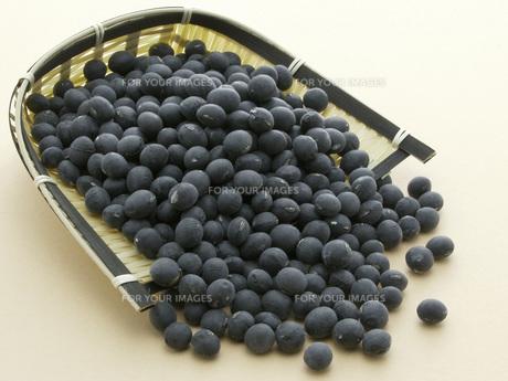 黒大豆の素材 [FYI01150144]