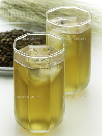 麦茶の素材 [FYI01150575]
