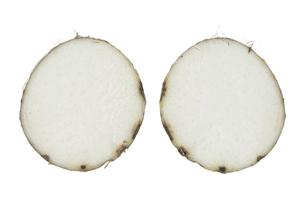 海老芋断面の素材 [FYI01150964]