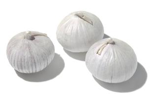 一片種大蒜の素材 [FYI01151232]