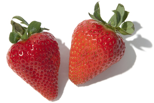 さくらもも苺の素材 [FYI01151287]