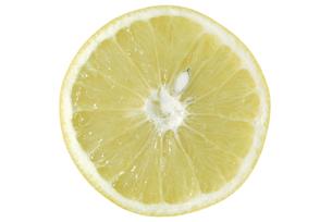 グレープフルーツ断面の素材 [FYI01151296]