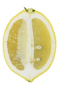 レモン断面の素材 [FYI01151508]