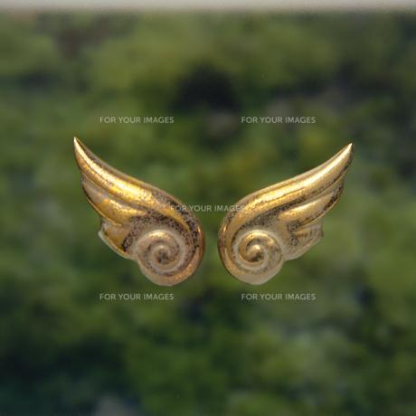 天使の羽根の素材 [FYI01152399]