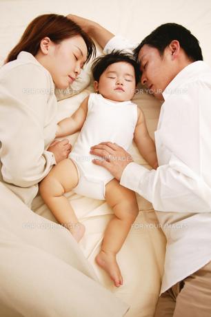 眠る親子の素材 [FYI01153199]