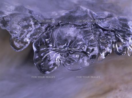 氷の素材 [FYI01153289]